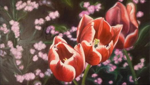 Tulipani rossi, 2012, olio su tela, cm 40x70